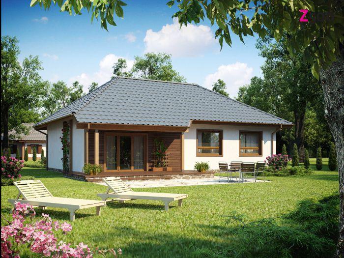 проект одноэтажного дома в стиле шале