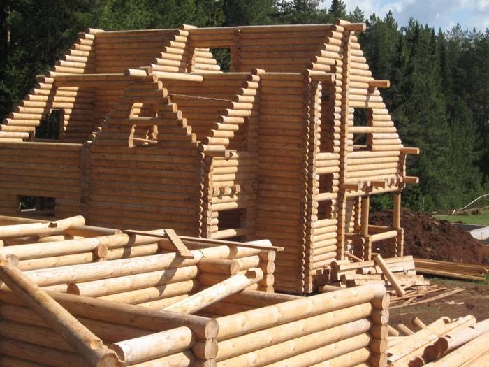 из какого дерева строить дом
