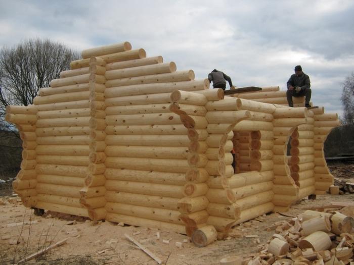 отзывы о домах из дерева