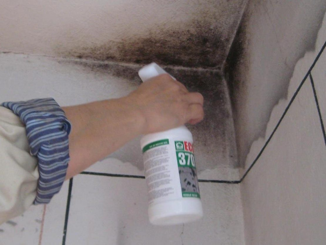 устранение грибка на потолке